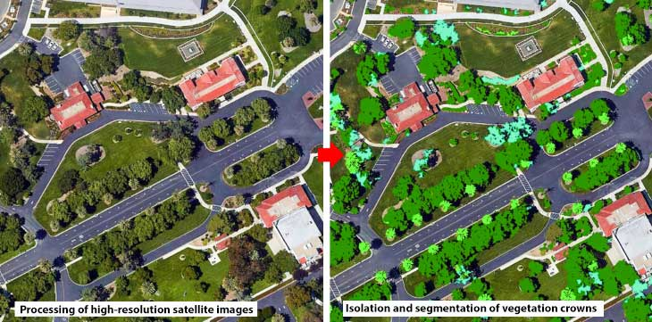 The technology of vegetation mapping under the urban setting